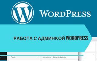 Работа с админкой Word Press