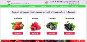 Частная агроусадьба. kupit-sazhenci.by
